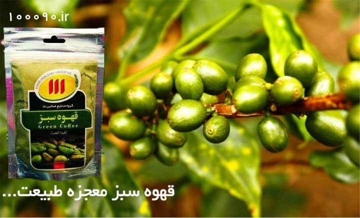 صفرا بر قوی قهوه سبز لاغری 111